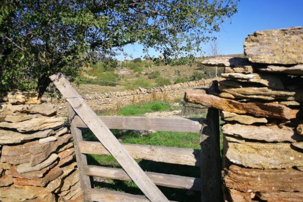 Socarrats visita la pedra seca de Vilafranca